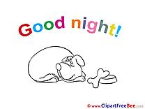 Dog download Good Night Illustrations