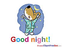 Dog Pajamas Pics Good Night  free Image