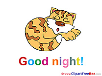 Drawing Cat printable Good Night Images