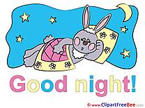 Hare Moon Stars free Illustration Good Night