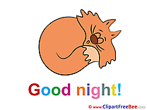 Image Cat Good Night Illustrations for free