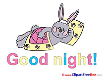 Pillow rabbit Chamomiles free Cliparts Good Night