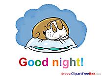 Sleeping Dog Good Night download Illustration