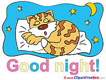 Tiger Bed Pillow Moon Pics Good Night free Cliparts