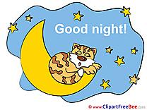 Tiger Moon Stars Clip Art download Good Night