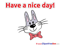 Hare Tie-bow Pics Have a Nice Day free Cliparts