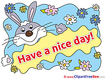 Rabbit Flowers printable Illustrations Have a Nice Day