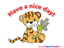 Tiger Flowers Clipart Have a Nice Day Illustrations