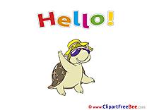 Turtle free Cliparts Hello