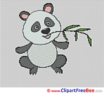 Koala Cross Stitches free
