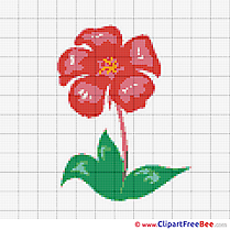 Cross Stitches Flower download for free