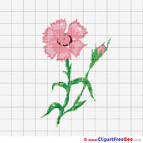 Daisy free Cross Stitch download