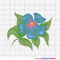 Design Flower Cross Stitches free