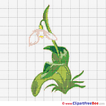 Jasmine Design free Cross Stitches