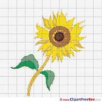 Sumflower free Cross Stitch download