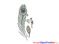 Feather download printable Illustrations