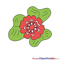 Flower printable Images for download