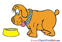 Bowl Dog Illustrations for free