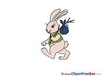 Hare Cliparts Easter for free