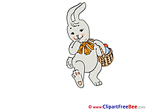 Rabbit Easter Egg Illustrations for free