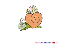 Snail Easter free Images download