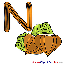 N Nut printable Illustrations Alphabet