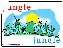 Jungle Pics Alphabet free Image