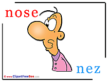 Nose Nez printable Illustrations Alphabet