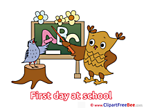 Owl Bird Letters Alphabet First Day at School free Images download