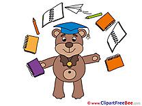 Bear free Illustration Graduation