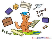 Squirrel Graduation free Images download