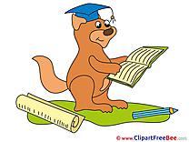 Squirrel Pics Graduation Illustration