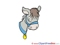 Donkey printable Illustrations Fairy Tale