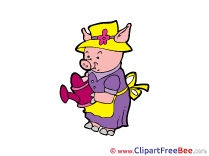 Piggy with Watering Can Pics Fairy Tale free Image