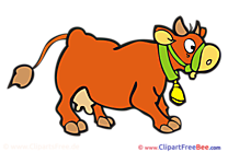 Cow download Clip Art for free