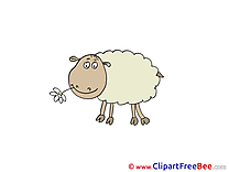 Eating Sheep free Illustration download