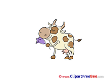 Flower Cow free Cliparts for download