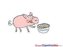 Food Pig Pics free Illustration