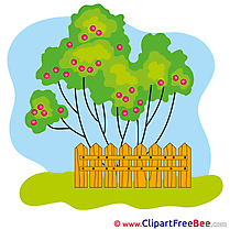 Garden Tree Apples Clipart free Image download