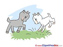 Goatlings Clipart free Illustrations