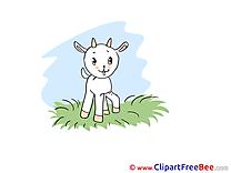 Grass Goatling download Clip Art for free
