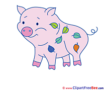 Leaves Pig Pics free download Image