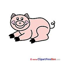 Piggy free Illustration download