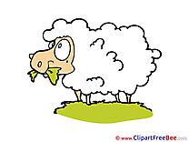 Sheep download printable Illustrations
