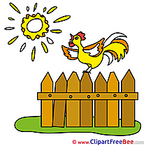 Sun Fence Cock Clip Art download for free