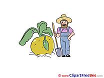 Turnip Man download printable Illustrations