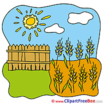 Wheat Sun Clouds Clipart free Illustrations