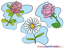 Beautiful printable Flowers Images