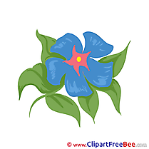 Blue Flowers Clipart Illustrations