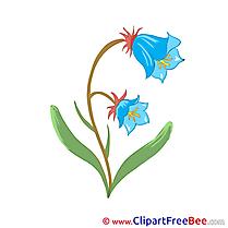 Blue Flowers free Illustration